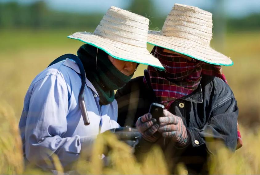 """อย่าลืมตรวจสอบสิทธิ์""""เยียวยาเกษตรกร""""เช้านี้ ธ.ก.ส. โอนเงินเยียวยา 5,000 บาท"""